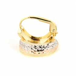Zlaté náušnice E10339-001