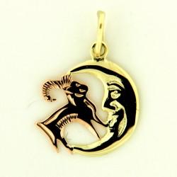 Zlatý přívěs 30.10.016 KOZOROH-1