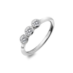 Stříbrný prsten Hot Diamonds Willow DR205