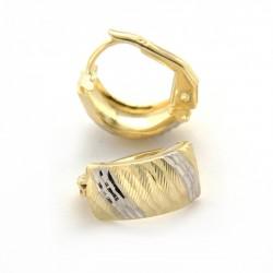 Zlaté náušnice E10345-1331