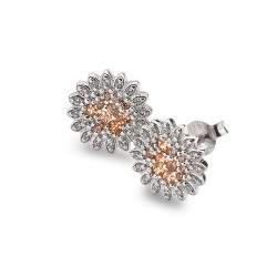 Stříbrné náušnice Hot Diamonds Emozioni Spirzzare EE032